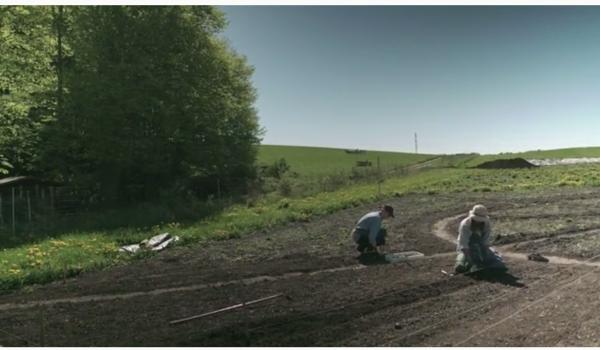 The New Seed Garden – crowdfunding til bevaring af heriloom grøntsagsfrø